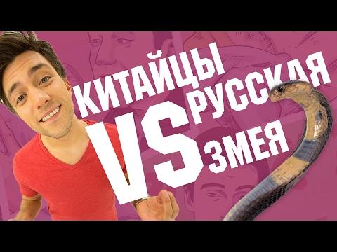 ПРАНК: КИТАЙЦЫ VS РУССКАЯ ЗМЕЯ | Пошалим с Шалимовым