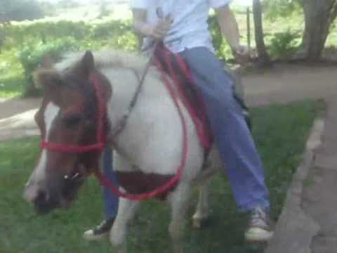 Empinando a  ponei