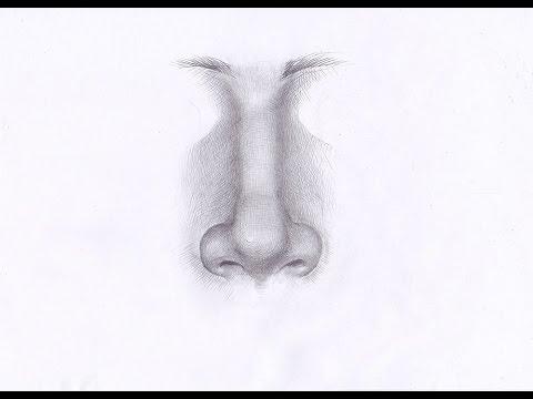 Видео как нарисовать нос человека карандашом поэтапно