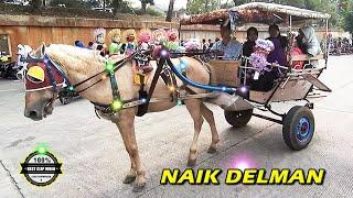 NAIK DELMAN ISTIMEWA ~ Lagu ANAK indonesia TERPOPULER Sepanjang MASA 👍