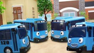 Tayo Bus & Toy Cars and Trucks. Tayo's Clones.