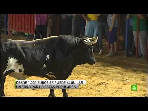 La España profunda 9: Se busca un toro asesino como Ratón
