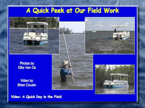 2011 OSLS - Shifting Baselines: Water Quality in the Central Indian River Lagoon