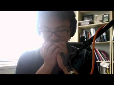 100 Strange Sounds No. 30 - Harmonica