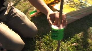 Cómo se coloca la barrera contra hormigas GuardaMonte®