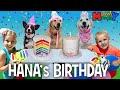 Puppy Birthday Party! 🐾🐶 || Mommy Monday -