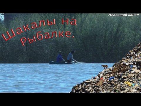 Шакалы на рыбалке.Рыбалка в отвратительных условиях.