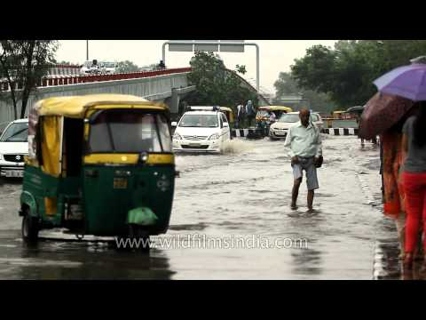 Safdarjung comes to a halt as rains flood roads
