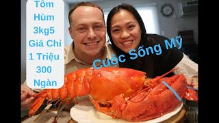 Vlog 472 ll  Ăn Con Tôm Hùm Bự Chà Bá Lửa 3,5Kg Chỉ Có 1 Triệu 300 Ngàn Ở Mỹ (7.7lbs Lobster )