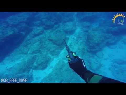 A Kuwaiti spear fisher fights back a shark attack | غواص كويتي يهاجم قرش