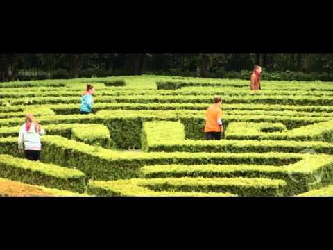 Książęce manewry - brzeska gra terenowa - wersja oficjalna