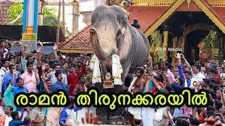 Thechikottukavu Ramachandran Mass Entry at Thirunakkara Pooram 2018