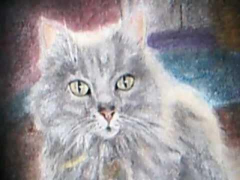 Sir Stimpson J Cat