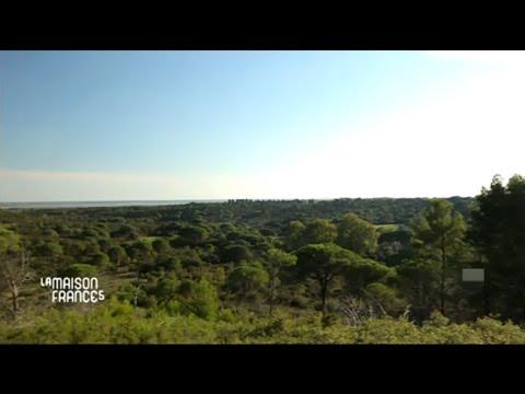 La maison france 5 en petite camargue dans le languedoc roussillon 3 3 12 - Youtube la maison france 5 ...