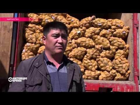 «Вход на рынок» и «родственники Назарбаева»