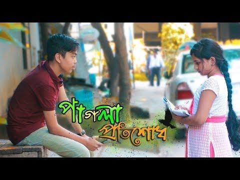 পাগলা প্রতিশোধ | Bangla Funny Video 2018 | Pagla Protisodh | New Funny Video | The Dream Project