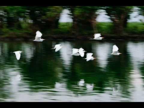 *beautiful Bangla Hamd* Allahu Allahu - Kazi Nazrul Islam video