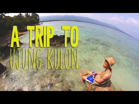 A Trip to Ujung Kulon