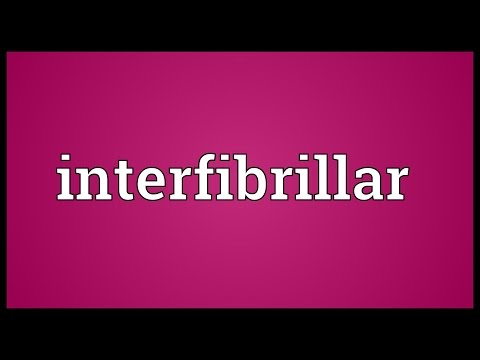 Header of interfibrillar