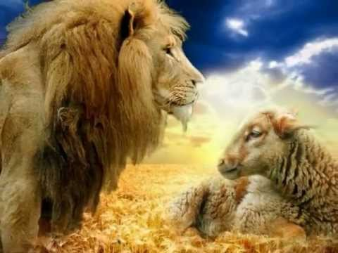 Dan Fogelberg - The Lion