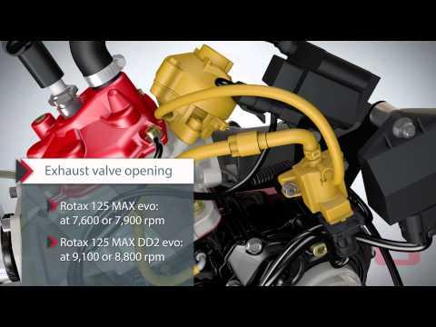 Rotax MAX evo engine series