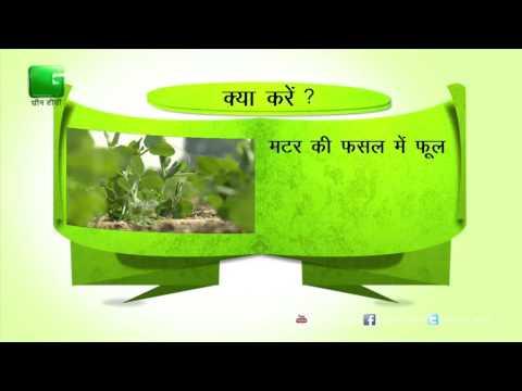 Green Gyan- Kya Karein Kya Na Karein- Fact 3 Green TV