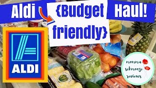 Aldi Haul || Healthy & Budget Friendly + MEAL PLAN🍍