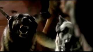 Watch Depeche Mode I Feel Loved video