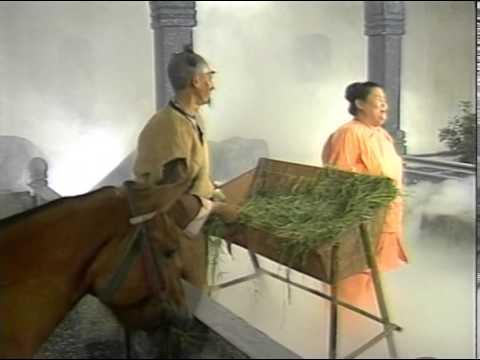 Truyện Cổ Tích Việt Nam — Sự Tích Cây Chổi video