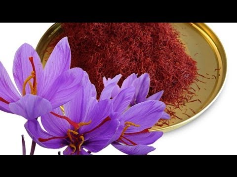 Healthy Herbs and Spices - Saffron