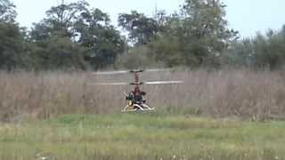 ramo Coax 2010 Electric Helicopter 3.