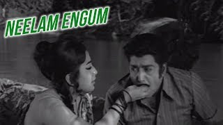 Neelam Engum Full Song | சொந்தம் | Sondham Video Songs | K.R Vijaya | Muthuraman