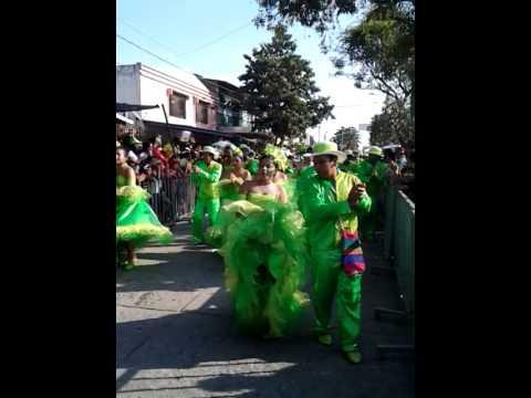 Así se vivió la #GranParada de caimanes en #Ciénaga #FestivaDelCaimán