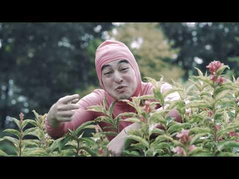 Pink Guy - Stfu