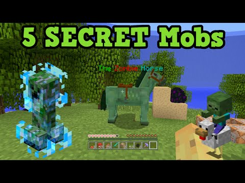 Minecraft Xbox 360 / PS3 - 5 Secret Mobs