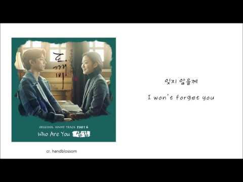 (KOR/ENG) [도깨비 OST Part 6] 샘김 (Sam Kim) - Who Are You LYRICS VIDEO