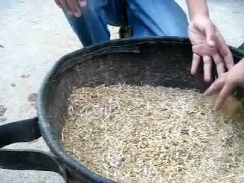 How To Make Cow Food :D (Bakra EID 2011)