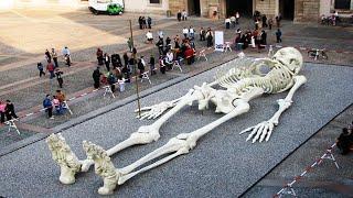 मिले सबूत , करोडो साल पहले इतने बड़े इंसान धरती पर मौजूद थे|| REAL PROOF THAT GIANTS ACTUALLY EXISTED