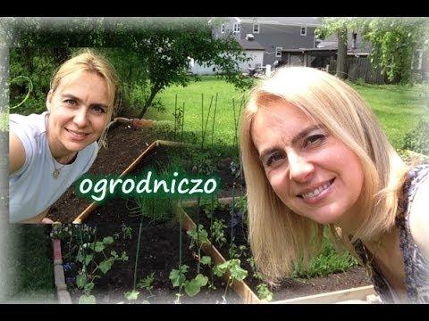 Mój Ogródek - Zdrowe Spędzanie Czasu:-) / Kierunek Zdrowie
