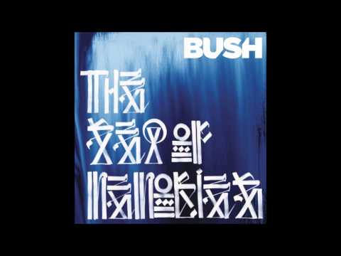 Bush - The Heart Of The Matter