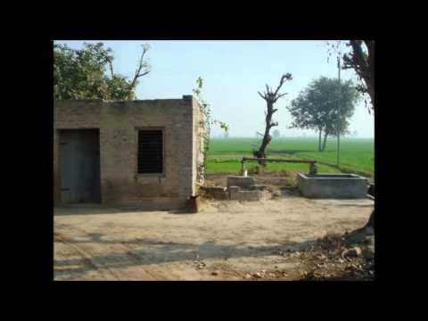 Mera Des Hove Punjab.mp4 video