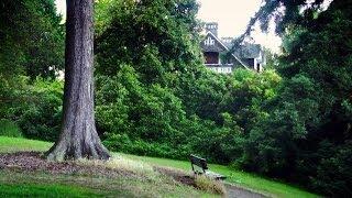 download lagu The House Where Kurt Cobain Took His Life, Seattle gratis