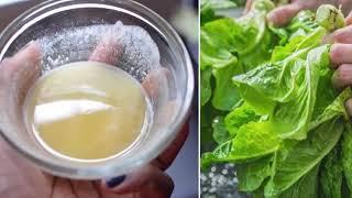 Thích ăn RAU XÀ LÁCH học ngay cách rửa trôi hết hóa chất + 1 bước vắt rau khô không hề dập