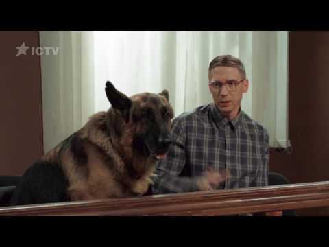 Пес на скамье подсудимых — На троих — 3 сезон – 6 серия