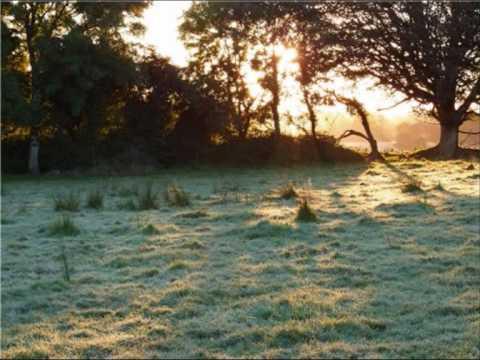 Fionn Regan - Lines Written In Winter