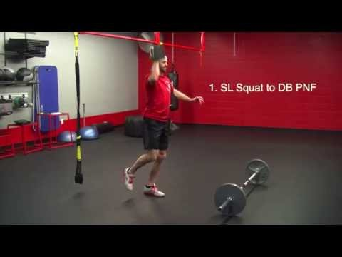 endurance training essay
