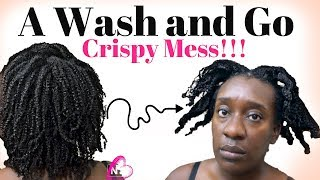 WASH AND GO on 4C Natural Hair | Defined But Crispy Definition