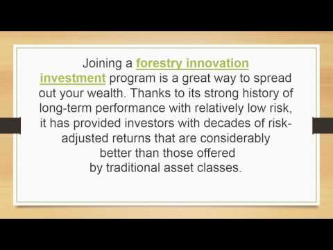 How to Develop an Investment for African Mahogany Tree and other Forestry Investments
