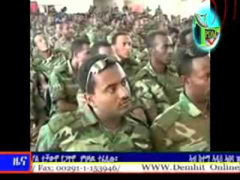 TPDM TV TIGRIGNA DAILY NEWS 1 11 2014