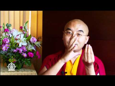 How to Meditate (1 of 2) ~ Mingyur Rinpoche talks about the essence of meditation